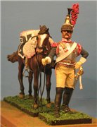 VID soldiers - Napoleonic french army sets 1aa257cee211t