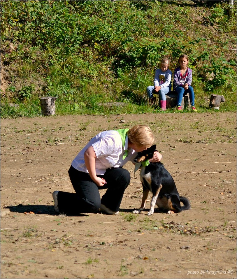 Танцы с собаками - Страница 3 932877441c5a