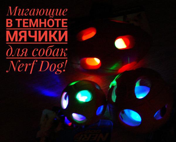Интернет-магазин Red Dog- только качественные товары для собак! - Страница 3 Bea6830e05bf