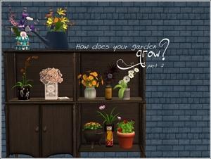 Цветы для дома - Страница 5 736bb26d01ea
