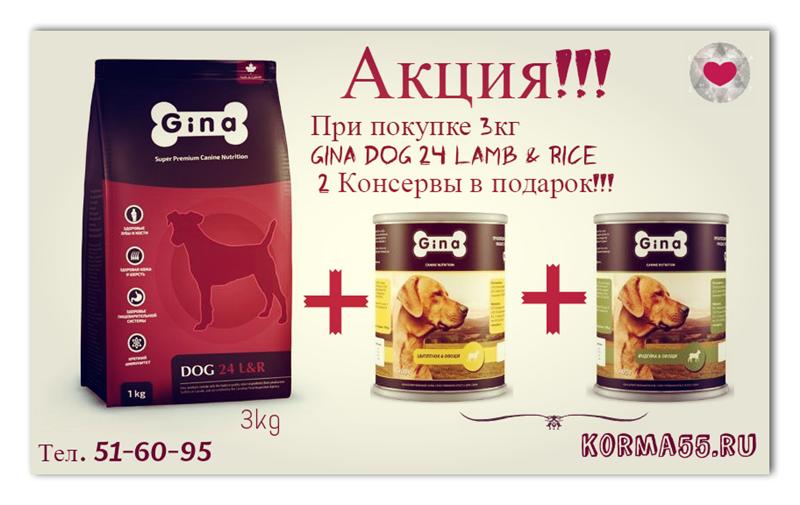 Gina Канадские корма Интернет магазин Korma55.ru B67b4f1e1378