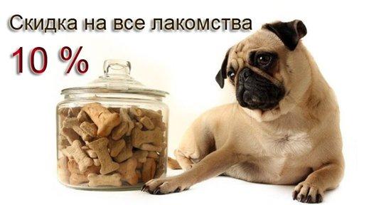 Интернет-зоомагазин Pet Gear - Страница 8 22dd869f9135