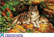 Планируем совместный отшив волков!!! - Страница 2 E38f4c5f56fdt