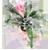 БРОМЕЛИЕВЫЕ (тилландсия, эхмея, вриезия, ананас)
