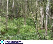 """Фотоконкурс """"Весна идет!"""" 1df2a37845dat"""