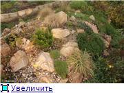 Cад Людмилы Ивановой из черкасс 26865854aa36t