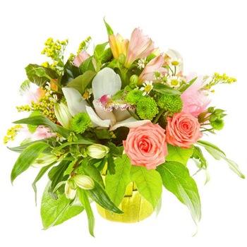 Поздравляем с Днем Рождения Яна (Ya_nocka) (ВишнЯ) 76eef2c49977t
