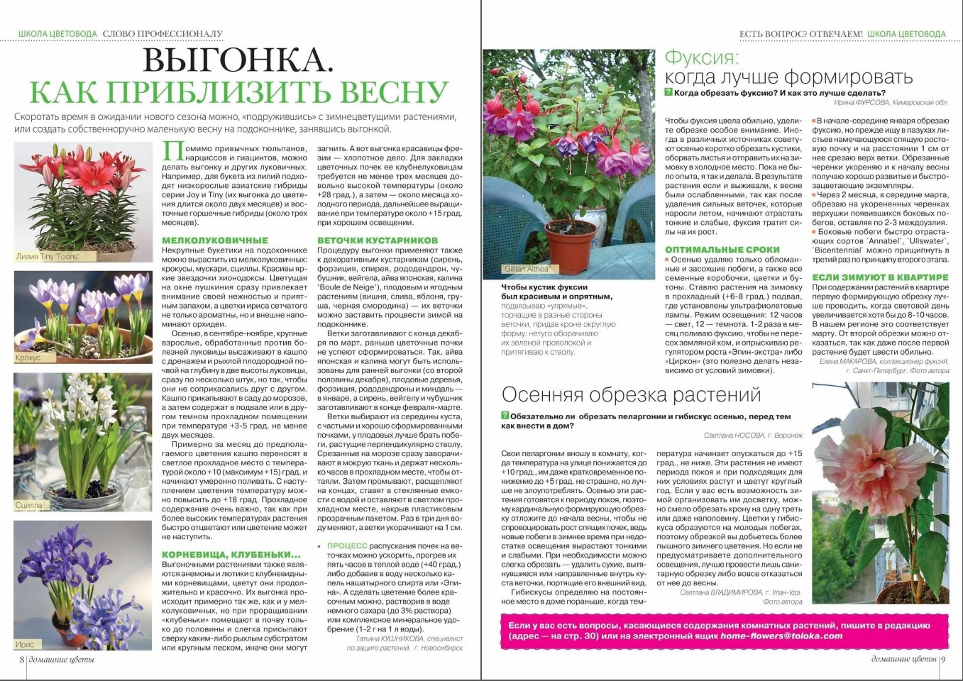 статьи о растениях из  газет и журналов - Страница 8 3c0ff98f5e2c