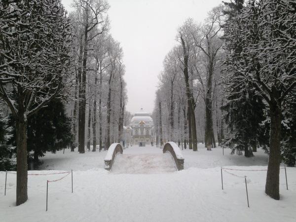 """"""" Есть городок в одном прекрасном парке...""""  ( Пушкин и Екатерининский парк ) - Страница 4 8696021577ae"""