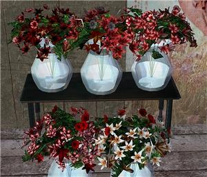 Цветы для дома - Страница 5 A3b55486636f