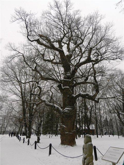 Зимняя сказка на наших фотографиях - Страница 4 2ae5d0394733