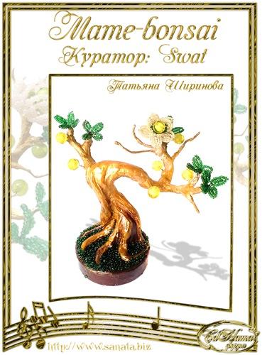 """Галерея """"Mame-bonsai"""" 038684e75886t"""
