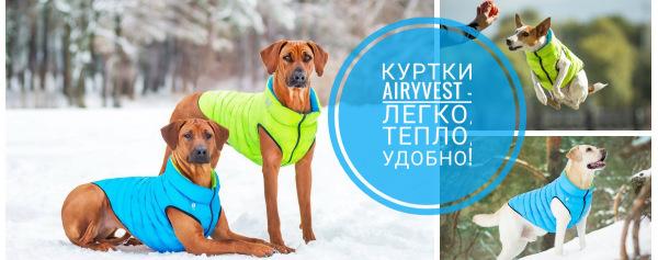 Интернет-магазин Red Dog- только качественные товары для собак! - Страница 3 61f940d091d0