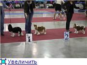 """ЕВРАЗИЯ-2012"" E211949d8f1ct"