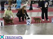 ЕВРАЗИЯ - 2012 8efa8a70b5a4t