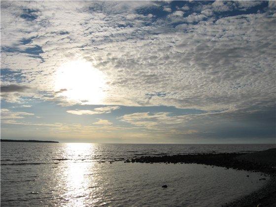 С любовью к Балтийскому морю 2530e28dd54a