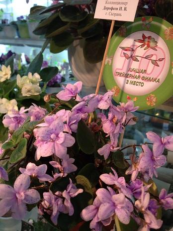 Выставка цветов - Страница 2 3c28d3de4d48