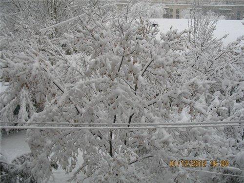 Зимняя сказка на наших фотографиях - Страница 5 54420aaeb290