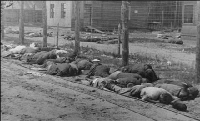 Факты вместо мифов: Холокост - Страница 6 712bd8ed7aa6