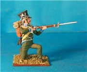 VID soldiers - Napoleonic wurttemberg army sets 4193b92b1993t