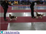 """""""ЕВРАЗИЯ-2012"""" Cd0cec335eb4t"""