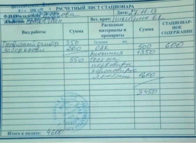 Москва, Итон, кобель, 10 лет 1f5a016edf4f