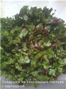 Оладушки из свекольных листьев с картошкой 55569d565572t