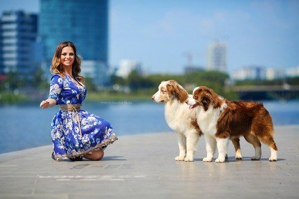 Выставочные успехи наших собак - 5 - Страница 30 76d461815819