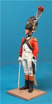 VID soldiers - Napoleonic swiss troops 220a5bbc1c4ft