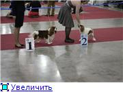 """""""ЕВРАЗИЯ-2012"""" 69d74fd02429t"""