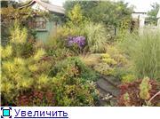 Cад Людмилы Ивановой из черкасс A1ecc57b598ct