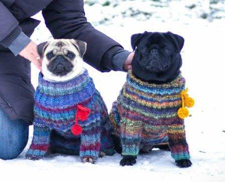 Magic Charm - ошейники, поводки, ринговки, вязаная одежда и другие аксессуары для собак E4b227037e3f