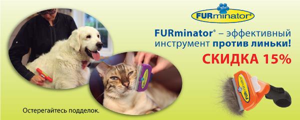 Интернет-магазин Red Dog- только качественные товары для собак! - Страница 4 123f4e9c7ee5