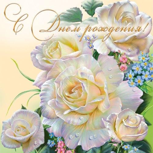 С Днём Рождения, ЛУКРЕЦИЯ! 26b966ab9d4d