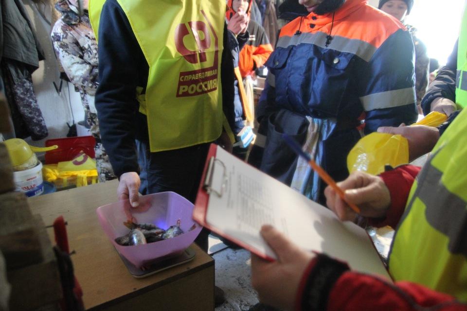Первенство города Кургана по ловле на мормышку со льда среди юношей и девушек с 14 до 17 лет. Bd752b7ad4f2