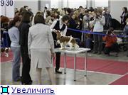 """""""ЕВРАЗИЯ-2012"""" Df56d85b4100t"""