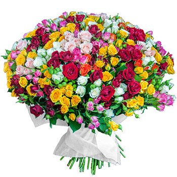 Поздравляем с Днем Рождения Ольгу (GuOlMi) 2a6a63e22ab4t
