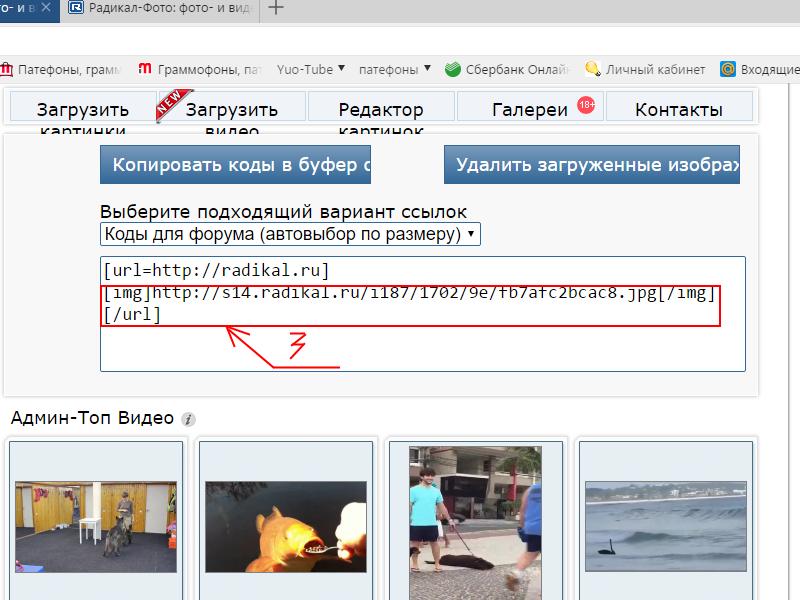 Сайт загрузить фото скинуть ссылку