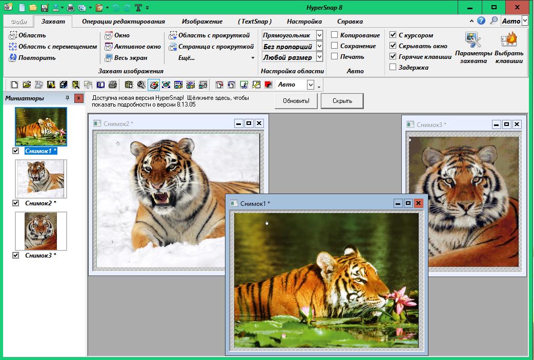 HyperSnap - инструмент для захвата изображения 509902800c5e