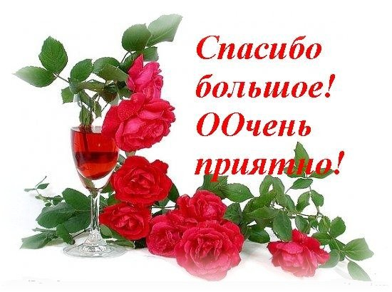 Поздравляем с Днем Рождения Татьяну Николаевну Долгову! 3d5118db1081
