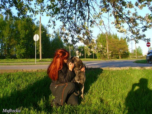 Собаки Татьяны Моисеенковой, кот Мензурка - Страница 4 21d44274fa2b
