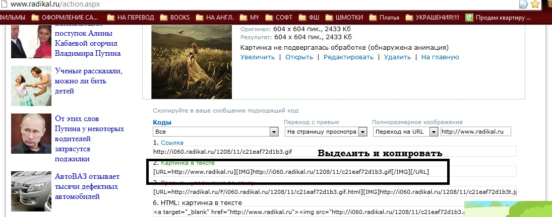 Как грузить картинки на хостинг хранения картинок  31fdbcc60470