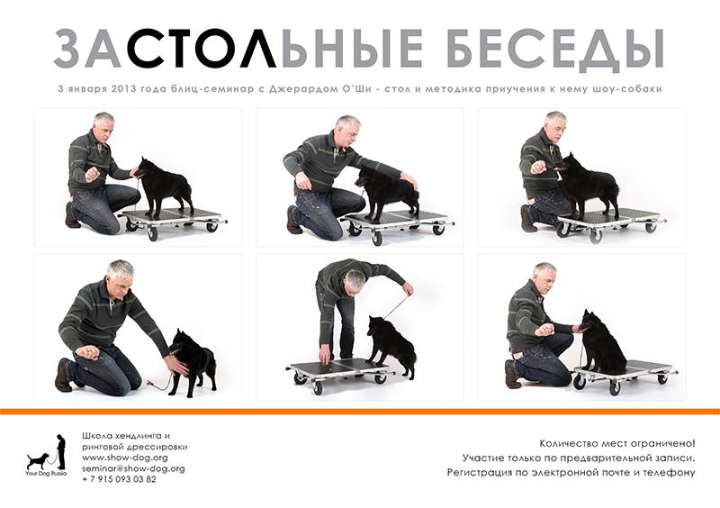 Джерард О'Ши - семинары по хендлингу и ринговой дрессировке в России C3a1be1a93de