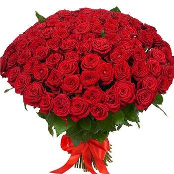 Поздравляем с Днем Рождения Ольгу (ОлиВия) 52bc995ff654t