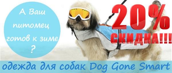 Интернет-зоомагазин Red Dog: только качественные товары для  - Страница 11 1c04677345da