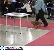 ЕВРАЗИЯ - 2012 8111b3a56958t