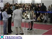 """""""ЕВРАЗИЯ-2012"""" 92f8447ef530t"""