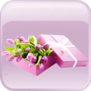 Каталог подарков Bd1fdbd8e4bd
