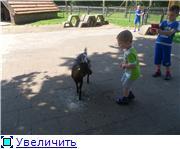 "Фотоконкурс ""Ребятушки и зверятушки"" - Страница 2 A6fabb335605t"