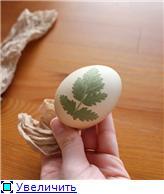 Красим пасхальные яйца 2bf01fcaaf87t
